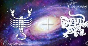 Скорпион-Обезьяна — Scorpion Goroskop