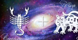Скорпион-Тигр — Scorpion Goroskop