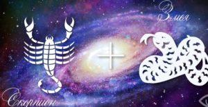 Скорпион-Змея — Scorpion Goroskop